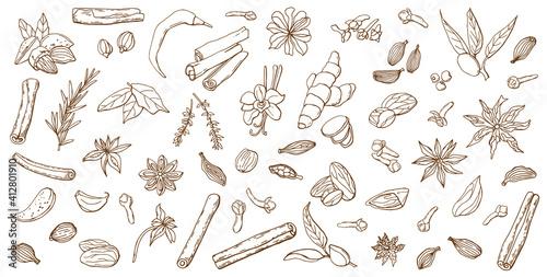 Carta da parati Linear set of various spices
