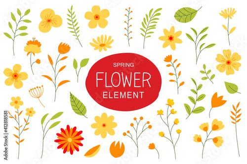 Flowers and leaves in spring season Fototapeta