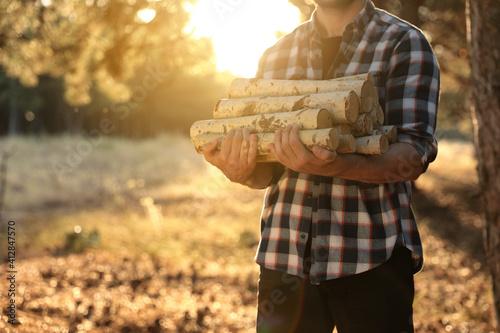 Slika na platnu Man holding pile of cut firewood in forest, closeup