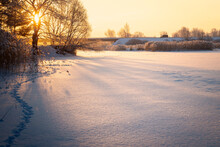 Beautiful Winter Landscape. The Branches Of The Trees Are Covered With Hoarfrost. Foggy Morning Sunrise. Colorful Evening, Bright Sunshine Over A River And Bridge Beautiful Nature Scene At Sunrise.