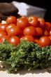 canvas print picture - Petersilie und ein Haufen Tomaten