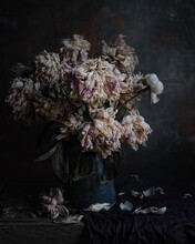 Classic Still Life With A Bouquet Of Wilted Peonies Flowers In A Blue Vintage Ceramic Vase Front View On Background Of Gray Textured Wall Closeup