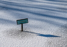 Lilly Pad Name Sign On Frozen Pond