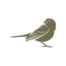 Lark Bird Logo Design Vector. Icon Symbol. Template Illustration. Creative Design