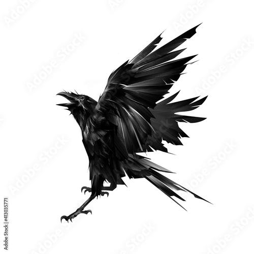Fototapeta premium drawn flying raven bird on white background