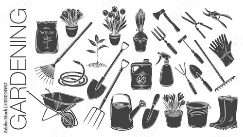 Foto Gardening tools and plants