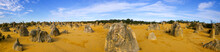 Petrified Forest Panorama