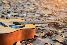 The Guitar Rests On An Area Filled With Natural Leaves.