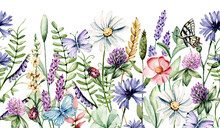 Watercolor Wild Flowers, Chamomile, Clover, Butterflies. Floral Repeat Border For Printing Invitations, Greeting Cards, Wall Art, Stickers And Other. Isolated On White. Hand Painting Illustration.