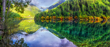 Panoramic View Of Lake And Trees In Forest