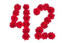 Numeral 42 Made Of Red Roses On A White Isolated Background. Element For Decoration. Red Roses.