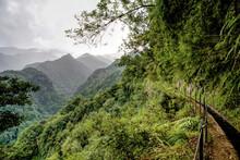 Portugal - Madeira - Levada Do Rei - HDR