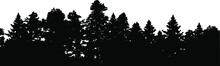 Forest Silhouette In Black On A White Background, Different Trees. Graphic Element, Vector EPS 10. No People, Commercial Use.
