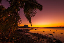 Fishing Boat And Palm At Sunset Time. Le Morn Mountain In Mauritius.