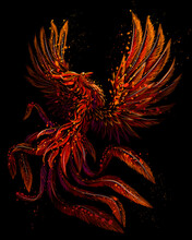 Phoenix. Color, Graphic, Digital Drawing Of The Phoenix Bird In Watercolor Style On A Black Background. Vector Graphics. Separate Layers.