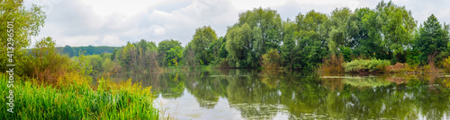 Obraz na plátně Summer panorama with trees and sedge on the shore river, reflection of trees in