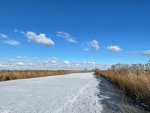 Fozen Canal In Friesland