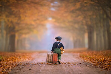 Little Boy Is Walking In The Forest With A Suitcase As Trawelling In Autumn Colors From Behind