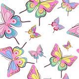 pattern beautiful color butterflies set