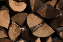 Woodpiles Are Freshly Cut Logs. A Stack Of Tree Trunks. Timber Processing In The Warehouse Of Wooden Building Structures. Kick The Chopped Wood. Forestry.
