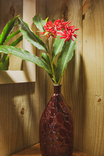 Beautiful Red Wild Flower Vase With Large Green Leaves And Well Illuminated On The Corner Of A Restroom Table In Front Of A Mirror.