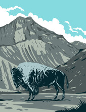 WPA Poster Art Of An American Bison With Eagle Peak Mountain In Yellowstone National Park, Wyoming, United States Of America Done In Works Project Administration Or Federal Art Project Style.