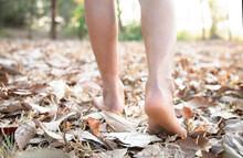 Heels Walking On Dry Leaves