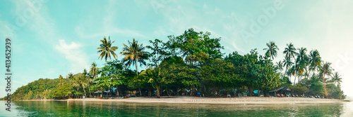Tropical coast with palms and tropical plants, with a sandy empty wild beach Wallpaper Mural