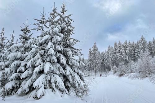 Winter im Thüringer Wald bei Goldlauter-Heidersbach © Henry Czauderna
