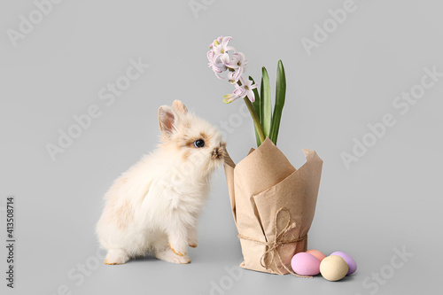 Fototapeta Cute rabbit and blooming spring plant on grey background obraz