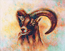 Drawing Of Male Wild Sheep With Mighty Horns On Abstract Blurry Background.