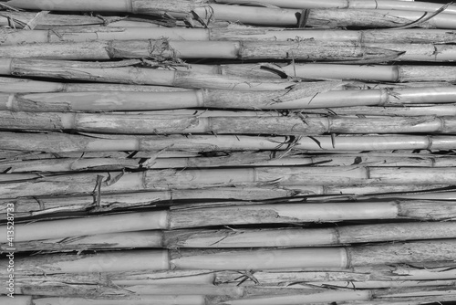 Papel de parede Full Frame Shot Of Bamboos