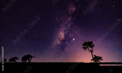 Obraz 3 elephants walking On the milky way background.. - fototapety do salonu