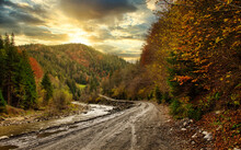 Autumn Forest With A Wet Dirt Road High In The Mountains A Dirt Road With Puddles, Forest, High Mountains.