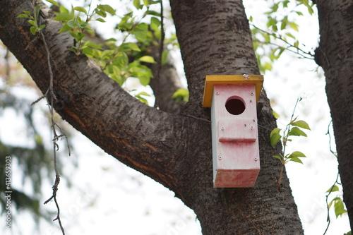 Birdhouse Mounted On Tree Fototapet
