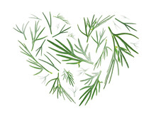 Green Sprigs Of Dill In The Shape Of A Heart On A White Background