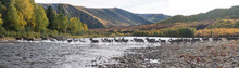 Panoramic View Of Deer Running In River At Yukon_Charley Rivers National Preserve