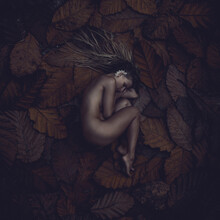 Overhead View Of Naked Woman Lying On Leaves At Field