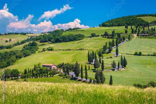 Fototapeta premium Winding rural road on the hill with cypresses, Tuscany, Italy