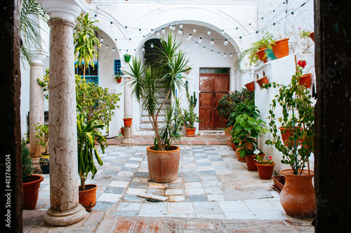 Fotografie, Obraz beautiful garden inside andalusian courtyard, marrakech
