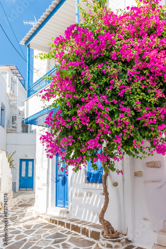 Fototapety, obrazy: Traditional Cycladitic alley with a narrow street, whitewashed houses and a blooming bougainvillea in Parikia, Paros island, Greece.