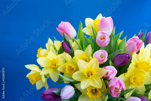 tulips and daffodils flowers Wallpaper Mural