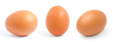 Chicken Egg Isolated On The White Background,.Collection,Set.