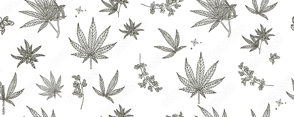 Fototapeta cannabis seamless pattern background.Vector illustration for banner and product