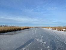 Frozen Canal In Friesland