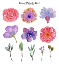 Random Watercolor Flower
