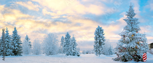 Winter snow landscape at sunset. Frozen Christmas trees on a snowy plain. #413835545