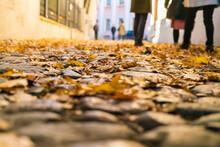 Closeup Of Cobblestones Street With Autumn Leafs