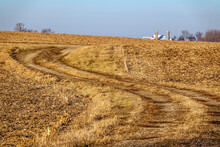 Multi-use Trail Between Cornfields On Winter Morning Without Snow