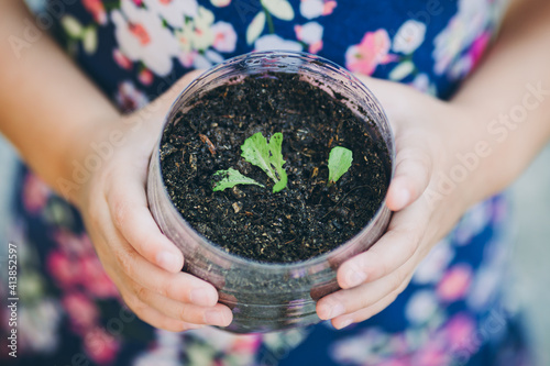 Obraz kid planting vegetable sprout in a recycled plastic reused bottle. Concept for grow your own food at home for sustainable living. - fototapety do salonu